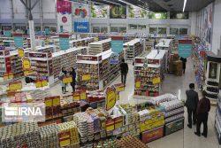 کارشناس اقتصادی:طرح الزام دولت به پرداخت یارانه برای تامین کالاهای اساسی، تورم زا است